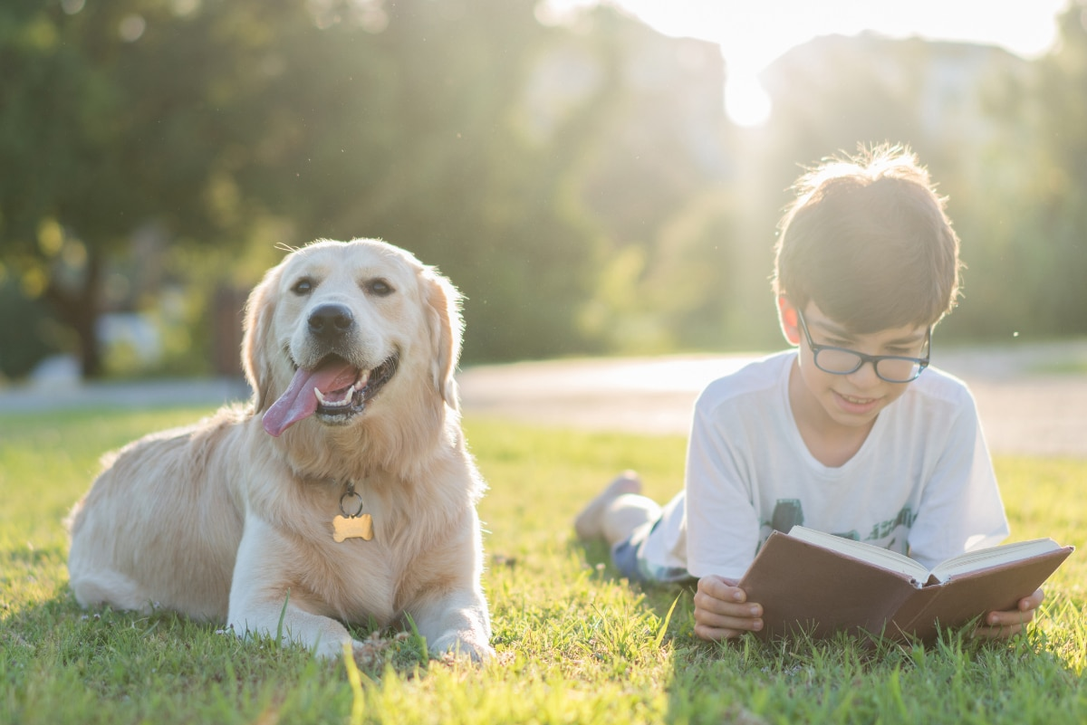 Tips to Inspire Summer Reading in Dyslexic Students